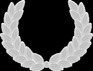 20170109_v1.0_wreath-305111__340[2]